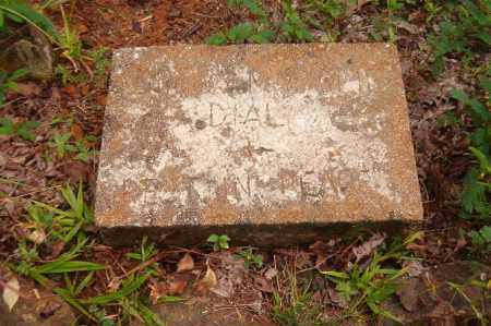 HOWARD, MAHALA E. - Pope County, Arkansas | MAHALA E. HOWARD - Arkansas Gravestone Photos