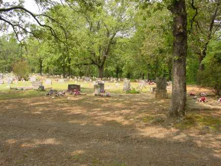 *HUDSON CEMETERY OVERVIEW,  - Pope County, Arkansas |  *HUDSON CEMETERY OVERVIEW - Arkansas Gravestone Photos