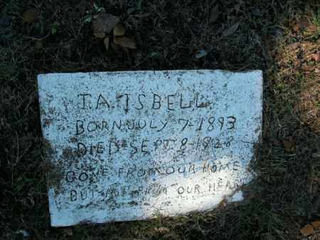 ISBELL, T A - Pope County, Arkansas | T A ISBELL - Arkansas Gravestone Photos