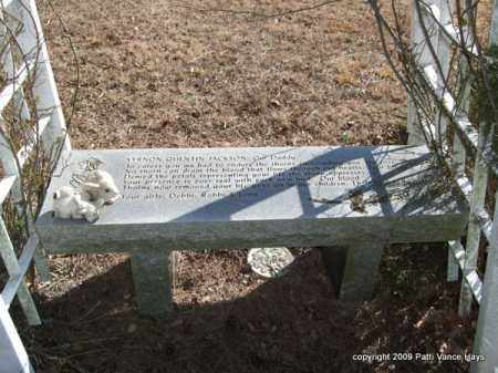 JACKSON, VERNON QUENTIN - Pope County, Arkansas | VERNON QUENTIN JACKSON - Arkansas Gravestone Photos