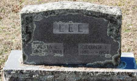 LEE, JULIA E - Pope County, Arkansas | JULIA E LEE - Arkansas Gravestone Photos