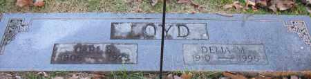LOYD, DELIA M - Pope County, Arkansas | DELIA M LOYD - Arkansas Gravestone Photos