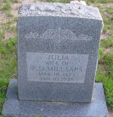 MILLSAPS, JULIA - Pope County, Arkansas | JULIA MILLSAPS - Arkansas Gravestone Photos