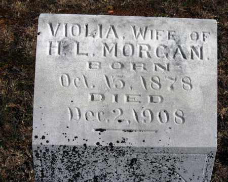 MORGAN, VIOLIA - Pope County, Arkansas | VIOLIA MORGAN - Arkansas Gravestone Photos