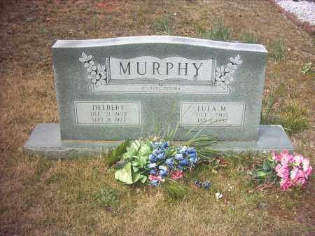 MURPHY, LULA MARY - Pope County, Arkansas | LULA MARY MURPHY - Arkansas Gravestone Photos