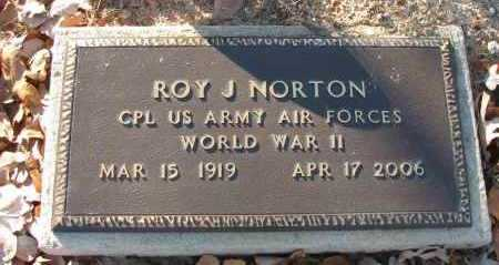 NORTON (VETERAN WWII), ROY J - Pope County, Arkansas | ROY J NORTON (VETERAN WWII) - Arkansas Gravestone Photos