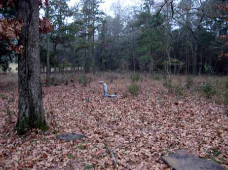 *OLD BAPTIST CEMETERY VIEW,  - Pope County, Arkansas |  *OLD BAPTIST CEMETERY VIEW - Arkansas Gravestone Photos