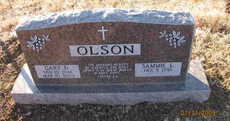 OLSON, GARY D - Pope County, Arkansas | GARY D OLSON - Arkansas Gravestone Photos