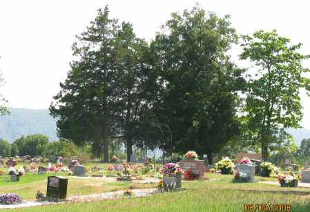 *OVERVIEW,  - Pope County, Arkansas |  *OVERVIEW - Arkansas Gravestone Photos