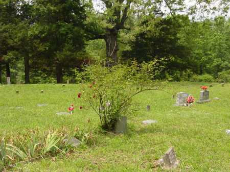 PARTON, JOHN STARNES - Pope County, Arkansas | JOHN STARNES PARTON - Arkansas Gravestone Photos