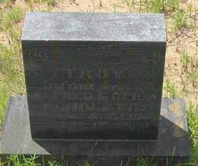 PENDLETON, TROY - Pope County, Arkansas | TROY PENDLETON - Arkansas Gravestone Photos