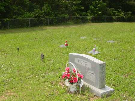 ROSS, WILLIS - Pope County, Arkansas | WILLIS ROSS - Arkansas Gravestone Photos