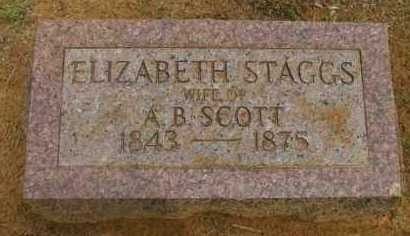 STAGGS, ELIZABETH - Pope County, Arkansas   ELIZABETH STAGGS - Arkansas Gravestone Photos
