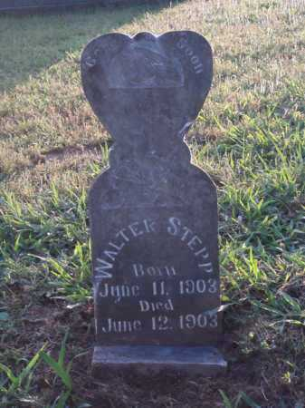 STEPP, WALTER - Pope County, Arkansas | WALTER STEPP - Arkansas Gravestone Photos