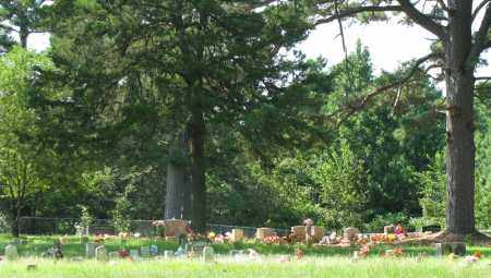 *SUGGS CEMETERY OVERVIEW,  - Pope County, Arkansas |  *SUGGS CEMETERY OVERVIEW - Arkansas Gravestone Photos