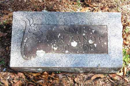 VAN ZANDT, ALVIE - Pope County, Arkansas | ALVIE VAN ZANDT - Arkansas Gravestone Photos
