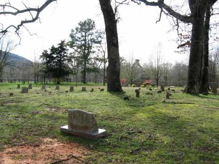 *WASHFIELD CEMETERY VIEW,  - Pope County, Arkansas |  *WASHFIELD CEMETERY VIEW - Arkansas Gravestone Photos