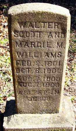 WILLIAMS, WALTER SCOTT - Pope County, Arkansas | WALTER SCOTT WILLIAMS - Arkansas Gravestone Photos