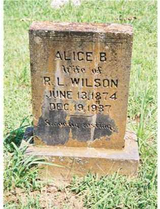 AUSTIN WILSON, ALICE BELL - Pope County, Arkansas | ALICE BELL AUSTIN WILSON - Arkansas Gravestone Photos