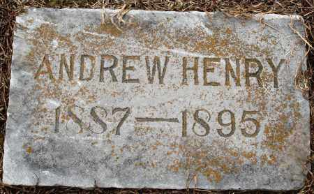 COLLINS, ANDREW HENRY - Prairie County, Arkansas | ANDREW HENRY COLLINS - Arkansas Gravestone Photos