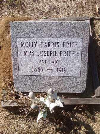 PRICE, MOLLY HARRIS - Pulaski County, Arkansas | MOLLY HARRIS PRICE - Arkansas Gravestone Photos
