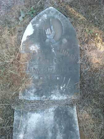 SKINNER, CHARLES S. - Pulaski County, Arkansas | CHARLES S. SKINNER - Arkansas Gravestone Photos
