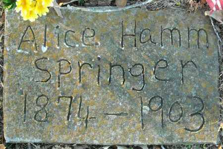 HAMM SPRINGER, ALICE - Pulaski County, Arkansas | ALICE HAMM SPRINGER - Arkansas Gravestone Photos