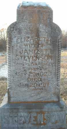 STEVENSON, ELIZABETH - Pulaski County, Arkansas | ELIZABETH STEVENSON - Arkansas Gravestone Photos