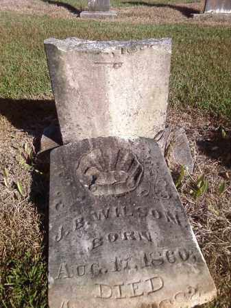 WILSON, JAMES B. - Pulaski County, Arkansas | JAMES B. WILSON - Arkansas Gravestone Photos