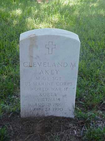 AKEY (VETERAN 3WARS), CLEVELAND M - Pulaski County, Arkansas | CLEVELAND M AKEY (VETERAN 3WARS) - Arkansas Gravestone Photos