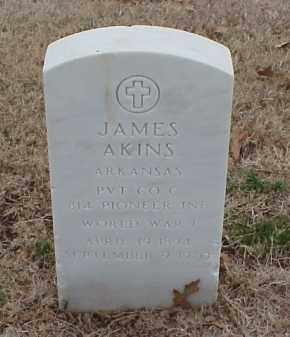 AKINS  (VETERAN WWI), JAMES - Pulaski County, Arkansas | JAMES AKINS  (VETERAN WWI) - Arkansas Gravestone Photos