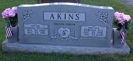AKINS, REBECCA SUE - Pulaski County, Arkansas | REBECCA SUE AKINS - Arkansas Gravestone Photos