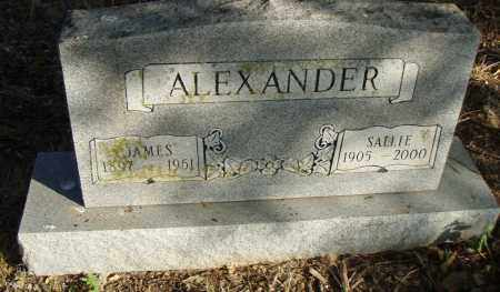 ALEXANDER, SALLY - Pulaski County, Arkansas | SALLY ALEXANDER - Arkansas Gravestone Photos