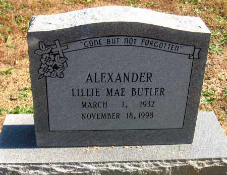ALEXANDER, LILLIE MAE - Pulaski County, Arkansas | LILLIE MAE ALEXANDER - Arkansas Gravestone Photos
