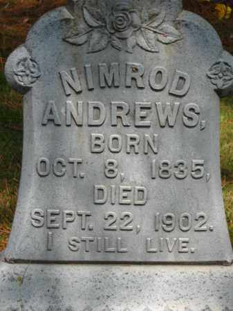 ANDREWS (VETERAN CSA), NIMROD - Pulaski County, Arkansas | NIMROD ANDREWS (VETERAN CSA) - Arkansas Gravestone Photos