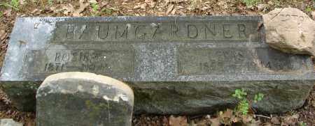 BAUMGARDNER, LEWIS W. - Pulaski County, Arkansas | LEWIS W. BAUMGARDNER - Arkansas Gravestone Photos