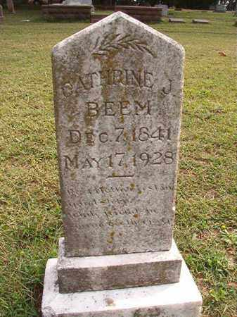 BEEM, CATHRINE J - Pulaski County, Arkansas | CATHRINE J BEEM - Arkansas Gravestone Photos