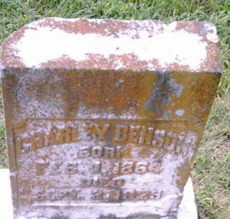 BENSON, CHARLEY - Pulaski County, Arkansas | CHARLEY BENSON - Arkansas Gravestone Photos