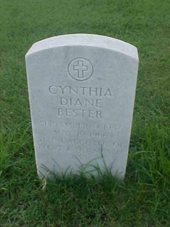 BESTER, CYNTHIA DIANE - Pulaski County, Arkansas | CYNTHIA DIANE BESTER - Arkansas Gravestone Photos