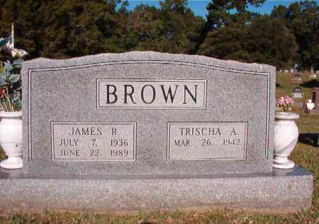 BROWN, JAMES R - Pulaski County, Arkansas | JAMES R BROWN - Arkansas Gravestone Photos