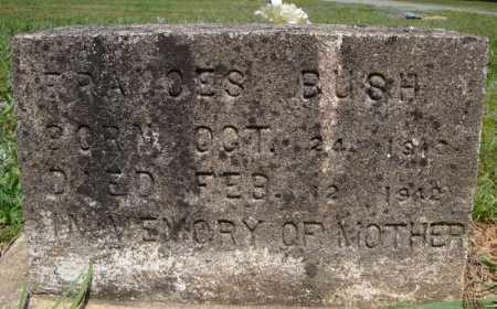 BUSH, FRANCES - Pulaski County, Arkansas   FRANCES BUSH - Arkansas Gravestone Photos