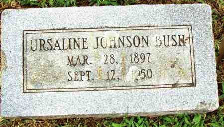 JOHNSON BUSH, URSALINE - Pulaski County, Arkansas | URSALINE JOHNSON BUSH - Arkansas Gravestone Photos