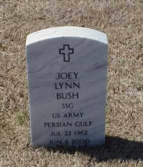 BUSH (VETERAN PGW), JOEY LYNN - Pulaski County, Arkansas | JOEY LYNN BUSH (VETERAN PGW) - Arkansas Gravestone Photos