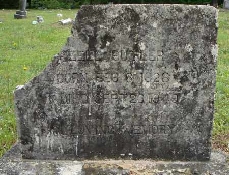BUTLER, EZELL - Pulaski County, Arkansas | EZELL BUTLER - Arkansas Gravestone Photos