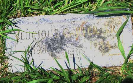 CARTER , SR., LUCIOUS - Pulaski County, Arkansas | LUCIOUS CARTER , SR. - Arkansas Gravestone Photos