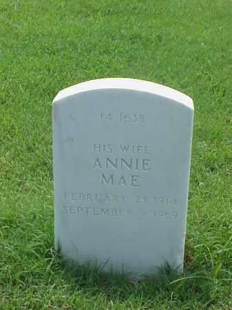 CLARK, ANNIE MAE - Pulaski County, Arkansas | ANNIE MAE CLARK - Arkansas Gravestone Photos