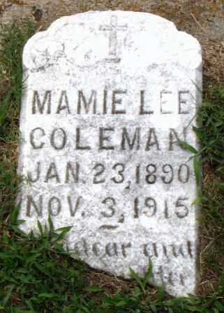 LEE COLEMAN, MAMIE - Pulaski County, Arkansas | MAMIE LEE COLEMAN - Arkansas Gravestone Photos