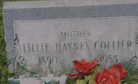 COLLIER, LILLIE - Pulaski County, Arkansas | LILLIE COLLIER - Arkansas Gravestone Photos