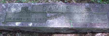 DAVIS, MINNIE - Pulaski County, Arkansas | MINNIE DAVIS - Arkansas Gravestone Photos