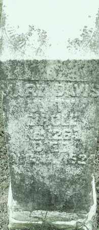 DAVIS, MARY - Pulaski County, Arkansas | MARY DAVIS - Arkansas Gravestone Photos